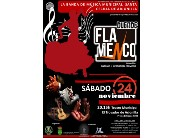 ESPECTACULO MUSICAL - DUENDE FLAMENCO